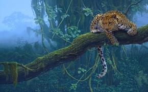 Обои дерево, ягуар, хищник, тропики