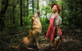 Картинка лес, встреча, волк, ситуация, девочка, Красная Шапочка