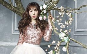 Картинка девушка, музыка, Цветы, азиатка, SNSD, Girls Generation, Южная Корея, K-Pop