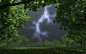 Обои сад, ночь, молния, деревья, гроза