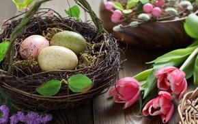 Картинка цветы, праздник, яйца, весна, пасха