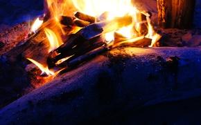 Картинка песок, дерево, огонь, костер