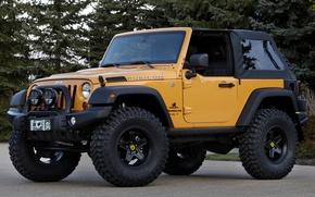 Обои джип, wrangler, concept, ренглер, деревья, концепт, передок, jeep, внедорожник, желтый, traildozer