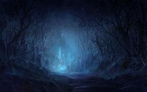 Картинка лес, деревья, ночь, камни, замок