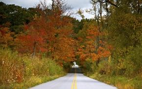 Картинка дорога, осень, небо, деревья, тучи