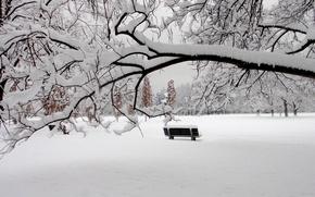 Обои зима, снег, парк, скамья