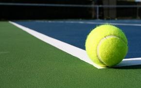 Обои line, tennis, ball