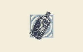 Картинка бутылка, минимализм, капсула, крыса, мертвая, бутыль