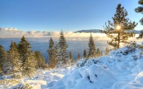 Картинка утро, горы, зима, California, Nevada, снег, Сьерра-Невада, деревья, Sierra Nevada, озеро, Lake Tahoe, озеро Тахо, ...