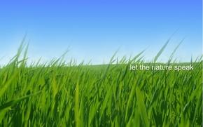 Картинка Nature, Sky, Grass, Green, Field, Speak