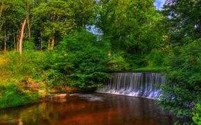 Обои деревья, парк, Англия, водопад, HDR, Yarrow Valley Country Park