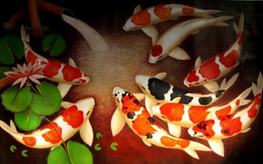 Картинка вода, рыбки, арт, лотос, золотые рыбки, родник, кои, koi fish