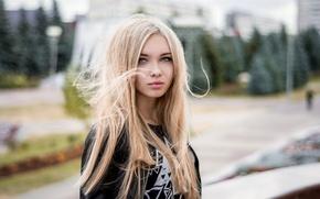 Картинка девушка, ветер, волосы, блондинка, красивая