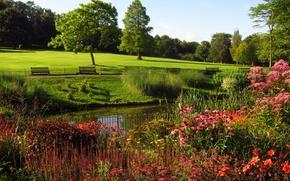 Картинка парк, Лондон, nature, London, деревья., gardens, prks