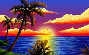 Картинка море, небо, облака, птицы, природа, пальма, вектор