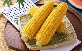 Обои желтый, цвет, еда, кукуруза, вкусно, corn, злак, полезно