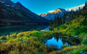 Картинка лес, небо, горы, река