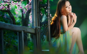 Картинка girl, sexy, sweet, asian