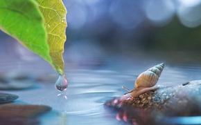 Капля воды картинка для детей