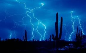 Картинка гроза, молния, пустыня, кактус