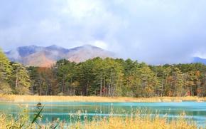 Картинка осень, лес, облака, горы, озеро
