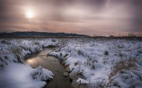 Обои поле, лес, река, снег, зима