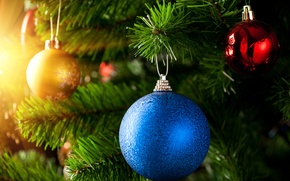 Картинка красный, Новый Год, золотой, New Year, Christmas, елка, шар, Рождество, ветки, синий
