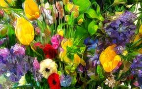 Картинка трава, цветы, лепестки, сад, луг