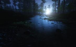 Картинка лес, вода, деревья, камни, рассвет, утро