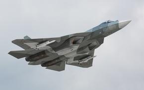 Картинка вооружение, Сухой, полёт, истребитель, поколения, ВВС, пятого, России, Т-50, ракеты, многоцелевой, ПАК-ФА, небо, самолёт, высота