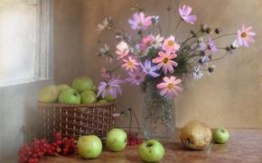 Картинка цветы, калина, букет, космея, композиция, ягоды, натюрморт, фрукты, ноябрь, яблоки, осень