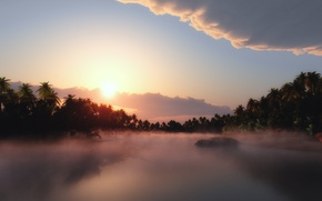 Картинка небо, солнце, облака, туман, Пальмы
