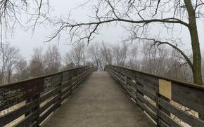 Картинка осень, туман, дорожка, мостик, bridge, Autumn, fog, path