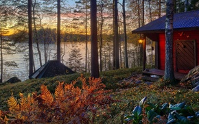 Картинка осень, лес, солнце, деревья, пейзаж, закат, вилла, дома, Природа, house, forest, архитектура, trees, landscape, nature, ...