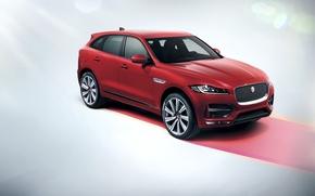 Картинка Jaguar, 2016, F-Pace, R-Sport, ягуар, кроссовер