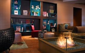 Картинка цветы, огонь, книги, интерьер, кресла, диваны, полки