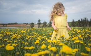 Картинка девочка, цветы, настроение, одуванчики, природа, луг