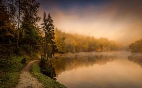 Обои Хорватия, туман, деревья, Trakoscan, тропинка, озеро, осень, лес