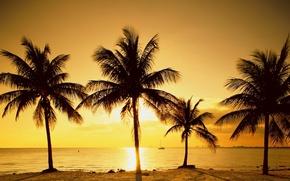 Картинка море, солнце, восход