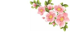 Картинка цветы, веточка, весна, арт