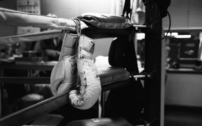 Картинка Gloves, Ring, Boxing