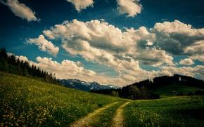 Картинка небо, трава, облака, деревья, цветы, горы, дом, путь