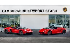 Картинка Lamborghini, Gallardo, Aventador, LP570-4 Spyder Performante, 50th Anniversary Edition, LP720-4 Roadster