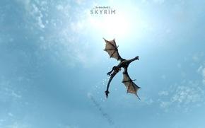 Картинка небо, полет, голубое, дракон, игра, крылья, The Elder Scrolls V: Skyrim