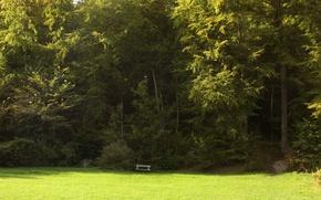 Картинка поле, трава, деревья, grass, Nature, trees, field, скамья, bench