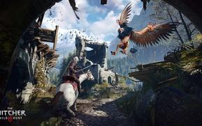 Обои перья, Геральт, крылья, ведьмак, грифон, Ведьмак 3: Дикая Охота, The Witcher 3: Wild Hunt, лошадь
