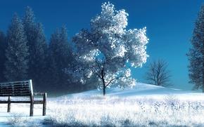 Картинка зима, снег, деревья, скамейка, арт, лавочка