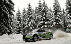 Картинка Зима, Авто, Снег, Лес, Спорт, WRC, Rally, Skoda, Fabia, Фабия, Шкода