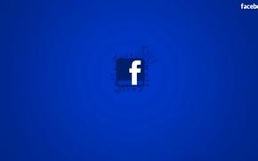 Обои сеть, текст, логотип, эмблема, facebook, социальная, листья