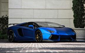 Картинка Roadster, Lamborghini, LP700-4, Aventador, matte blue